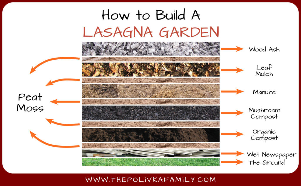 Preparing Vegetable Beds For Spring Lasagna Gardening
